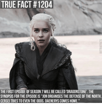 "Memes, True, and Home: TRUE FACT # 1204  THE FIRST EPISODE OF SEASON 7 WILL BE CALLED 'DRAGONSTONE'. THE  SYNOPSIS FOR THE EPISODE IS ""JON ORGANISES THE DEFENSE OF THE NORTH  CERSEI TRIES TO EVEN THE ODDS. DAENERYS COMES HOME gameofthrones gameofthronesfamily asoiaf asongoficeandfire daenerystargaryen jonsnow cerseilannister jaimelannister tyrionlannister sansastark aryastark tv follow"