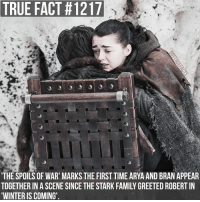 Love seeing all the Starks back at Winterfell 😄 gameofthrones gameofthronesfamily asoiaf asongoficeandfire aryastark maisiewilliams branstark isaachempsteadwright tv follow: TRUE FACT #1217  THE SPOILS OF WAR' MARKS THE FIRST TIME ARYA AND BRAN APPEAR  TOGETHER IN A SCENE SINCE THE STARK FAMILY GREETED ROBERT IN  WINTER IS COMING' Love seeing all the Starks back at Winterfell 😄 gameofthrones gameofthronesfamily asoiaf asongoficeandfire aryastark maisiewilliams branstark isaachempsteadwright tv follow