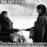 Memes, True, and 🤖: TRUE FACT #1219  'THE SPOILS OF WAR' MARKS THE FIRST APPEARANCE OF THE VALYRIAN STEEL  DAGGER SINCE THE SEVENTH EPISODE OF SEASON 1, 'YOU WIN OR YOU DIE' Correction - thanks to @ajaxx9999 for pointing it out 😄 Also, to those who mentioned it in the previous post, it isn't the dagger Littlefinger uses when he betrays Ned