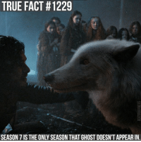 gameofthrones gameofthronesfamily asoiaf asongoficeandfire ghost direwolf jonsnow tv follow: TRUE FACT #1229  SEASON 7 IS THE ONLY SEASON THAT GHOST DOESN'T APPEAR IN. gameofthrones gameofthronesfamily asoiaf asongoficeandfire ghost direwolf jonsnow tv follow
