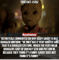 "Memes, 🤖, and Oni: TRUE FACT #1262  MarvelTrue Facts  KEVIN FEIGE COMMENTED ON WHY BABY GROOTIS IN A  RALAGERUNIFORM: ""HE ONY HASITVERY BRIEFLY AND  THE VERY MEAN  AND PUT HIMIN,  BECAUSE THEY THINK IT'S FUNNY GROOTDOESNOT  THINKIT'S FUNNY."" Who likes The Ravager costume on Baby Groot?"