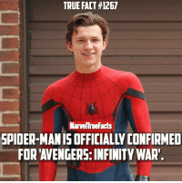 Memes, 🤖, and Infinity Wars: TRUE FACT #1267  MarvelTrueFacts  SPIDER-MAN IS OFFICIALLY CONFIRMED  FOR AVENGERS: INFINITY WAR. In other news, water is wet.