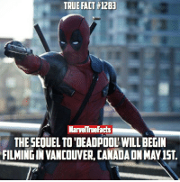 HYPE! 👏🏻 Hopefully the studio can afford more X-Men this time. 😂: TRUE FACT#12BE  Mame True Facts  THE SEOUEL TO DEADPOOL WILL BEGIN  FILMINGIN VANCOUVER, NAD HYPE! 👏🏻 Hopefully the studio can afford more X-Men this time. 😂
