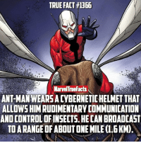 Memes, True, and 🤖: TRUE FACT#1366  V v  MarvelTrueFacts  ANTMANWEARSADYBERNETICHELMETTHAT  ALLOWSHIM RUDIMENTARY COMMUNICATION  ANOCONTROLOFINSECTS HECAN BROADCAST  TOARANGEOFABOUTONEMILE(1.6KM) One mile... that's thousands upon thousands of insects..😳🐜