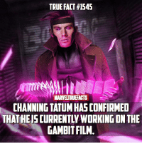 Memes, True, and Channing Tatum: TRUE FACT #1545  MARVELTRUEFACTS  CHANNING TATUM HASCONFIRMED  THAT HEIS CURRENTLY WORKING ON THE  GAMBIT FILM. I wonder what he means by this. 🤔 As far as I know they haven't announced a new director yet so maybe he's researching or helping pre-production?