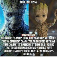"""I can see where @jamesgunn is coming from in taking this direction with the character. What is your favorite version of Groot? 🤔: TRUE FACT #1555  MARVELTRUEFACTS  ACCORDING TO UAMES GUNN, BABY GROOT IS NOT GROOT  HE'S A DIFFERENT CHARACTER AND HE ODES NOT HAVE  THAT CHARACTERS MEMORIES, """" GUNN SAID, ADDING  THAT RESURRECTING GROOT AS-IS WOULD HAVE  RENDERED GROOT'S HEROIC MOVE A """"MEANINGLESS  SACRIFICE,"""" I can see where @jamesgunn is coming from in taking this direction with the character. What is your favorite version of Groot? 🤔"""