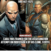 Assassination, Future, and Memes: TRUE FACT #1575  MARVELTRUEFACTS  CABLE WAS FRAMED FOR THE ASSASSINATION  ATTEMPT ON PROFESSOR X BY HISCLONE, STRYFE This would make a great plot for a future X-Men movie! 👀 I know this is a lengthy fact but it's worth the read if you're unfamiliar with this story.