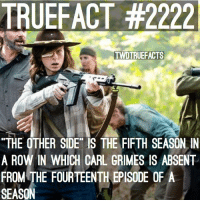 """Carl's always absent for the 14th Episode.. walkingdead twd thewalkingdead: TRUE FACT #2222  TWDTRUEFACTS  """"THE OTHER SIDE IS THE FIFTH SEASON IN  A ROW IN WHICH CARL GRIMES IS ABSENT  FROM THE FOURTEENTH EPISODE OF A  SEASON Carl's always absent for the 14th Episode.. walkingdead twd thewalkingdead"""