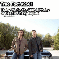 Birthday, Memes, and Omg: True Fact #2561  uoday Marks the 50th birthday  of Dean S Chevy Impala  Sthesam Winchester OMG HAPPY BIRTHDAY BABY (YES OUR FANDOM IS SO EXTRA BC WE ARE CELEBRATING THE BIRTHDAY OF A CAR, BUT THIS CAR IS SOO IMPORTANT TO SAM AND DEAN, SO IT IS TO US TOO) 24TH APRIL 1967❤ Happy 50th Birthday Baby 1967impala