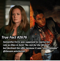 "Memes, Money, and True: True Fact #2676  Samantha Ferris was supposed to reprise her  role as Ellen in 3x16 ""No rest for the Wicked"",  but declined the offer because it was ""unacceptable""  @thesam. Winchester They probably offered her less money cause of the writers strike of 2007 ➖➖➖➖➖➖➖➖➖➖➖➖➖➖➖➖➖➖➖ supernaturalfacts supernaturaltumblr supernatural spn spnfacts dean thecw sam supernaturalfamily Castiel spn12 spnfunny jensenackles supernaturalfunny gifs samwinchester jaredpadalecki menofletters alwayskeepfighting deanwinchester spnfamily winchester cas mishacollins crowley supernaturalseason12 youareenough"