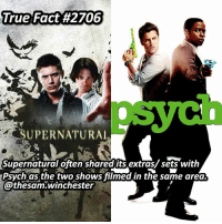 Never watched the show before ➖➖➖➖➖➖➖➖➖➖➖➖➖➖➖➖➖➖➖ supernaturalfacts supernaturaltumblr supernatural spn spnfacts dean thecw sam supernaturalfamily Castiel spn12 spnfunny jensenackles supernaturalfunny gifs samwinchester jaredpadalecki menofletters alwayskeepfighting deanwinchester spnfamily winchester cas mishacollins crowley supernaturalseason12 youareenough: True Fact#2706  SUPERNATURAL  Supernatural often sharedlits extras/ sets with  Psych as the two shows filmed in the same area.  @thesam.winchester Never watched the show before ➖➖➖➖➖➖➖➖➖➖➖➖➖➖➖➖➖➖➖ supernaturalfacts supernaturaltumblr supernatural spn spnfacts dean thecw sam supernaturalfamily Castiel spn12 spnfunny jensenackles supernaturalfunny gifs samwinchester jaredpadalecki menofletters alwayskeepfighting deanwinchester spnfamily winchester cas mishacollins crowley supernaturalseason12 youareenough