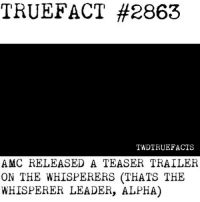 @amcthewalkingdead y'all got this vibe from @ahsfx ? Cuz I sure did 😂 walkingdead thewalkingdead twd: TRUE:FACT #2863  TWDTRUEFACTS  AMC RELEASED A TEASER TRAILER  ON THE WHISPERERS (THATS THE  WHISPERER LEADER, ALPHA) @amcthewalkingdead y'all got this vibe from @ahsfx ? Cuz I sure did 😂 walkingdead thewalkingdead twd