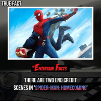 Who knew? Both really good end credit scenes! QOTD: What's been your favourite Marvel end credit scene? 🎥 • strangerthings gameofthrones thewalkingdead gotham arrow cars3 justiceleague movies thehouse tvshows theflash tlk themist americangods youtube got marvel fearthewalkingdead starwars dbz mw love followme wwe like spiderman babydriver transformers homecoming mcu: TRUE FACT  ENTERTAIN FACTS  THERE ARE TWO END CREDIT  SCENES IN 'SPIDER-MAN: HOMECOMING Who knew? Both really good end credit scenes! QOTD: What's been your favourite Marvel end credit scene? 🎥 • strangerthings gameofthrones thewalkingdead gotham arrow cars3 justiceleague movies thehouse tvshows theflash tlk themist americangods youtube got marvel fearthewalkingdead starwars dbz mw love followme wwe like spiderman babydriver transformers homecoming mcu