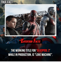 """Facts, Love, and Memes: TRUE FACT  NTERTAIN FACTS  THE WORKING TITLE FOR 'DEADPOOL 2'  WHILE IN PRODUCTION, IS """"LOVE MACHINE"""" Who knew? Domino looks amazing! QOTD: On a scale of 1-10, how excited are you for deadpool2 ? 🎥 • strangerthings gameofthrones thewalkingdead gotham arrow cars3 justiceleague movies thehouse tvshows theflash warfortheplanetoftheapes themist americangods youtube got marvel fearthewalkingdead starwars dbz mw love followme wwe like spiderman babydriver transformers homecoming"""