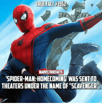 """What was your favorite Easter egg from Spider-Man: Homecoming? 🕷: TRUE FACT  TRUE FAT 1552  MARVELTRUEFACTS  SPIDER-MAM: HOMECOMING WAS SENT T  THEATERS UNDER THE NAME OF """"SCAVENGER"""" What was your favorite Easter egg from Spider-Man: Homecoming? 🕷"""