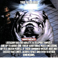 Memes, True, and 🤖: TRUE FACTALiage  MARVELTRUEFACTS  LOCKHAWHASTHEABILITYTOTELEPORTHIMSELF  ANOUPTOABOUTONE TONDFADDITIONALMASS (INCLUDING  UPTDADOZENPEOPLE, IFTHEIRCOMBINED WEIGHTDOES NOT  EXCEED THAT LIMIT) ACROSSSPACEANOEVENTO OTHER  DIMENSIONS. I think we need more dog superheroes. 🐶