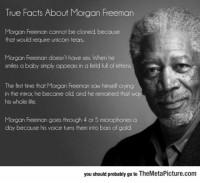 Crying, Facts, and Life: True Facts About Morgan Freeman  Morgan Freeman cannot be cloned because  that would require unicorn tears.  Morgan Freeman doesn't have sex When he  smiles a baby simply appears in a field full of kittens  The first time that Morgan Freeman saw himself crying  in the miror, he became old and he remained that w  his whole life.  Morgan Freeman goes through 4 or 5 microphones a  day because his voice turns them into bars of gold  you should probably go to TheMetaPicture.com epicjohndoe:  Facts About Morgan Freeman You Probably Didn't Know