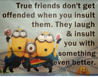 Memes, Insulting, and Insults: True friends don't get  offended when you insult  them. They laugh  & insult  you with  something  even better. True Friends!