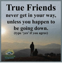 <3 Understanding Compassion: True Friends  never get in your way,  unless you happen to  be going down.  (type 'yes' if you agree)  Understanding  Compassion <3 Understanding Compassion