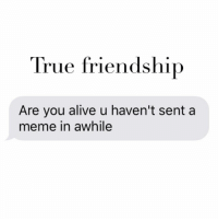 Awhil: True friendship  Are you alive u haven't sent a  meme in awhile
