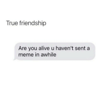 yea I tag my peeps in memes like everyday😂😂: True friendship  Are you alive u haven't sent a  meme in awhile yea I tag my peeps in memes like everyday😂😂