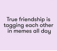 funny friendship quotes: True friendship is  tagging each other  in memes all dau