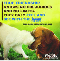 Because true friendship goes beyond race.: TRUE FRIENDSHIP  KNOWS NO PREJUDICE  AND NO LIMITS  THEY ONLY  FEEL AND  SEE WITH THE heart  LOUISE ROLOSON, MERCOLA HEALTHYPETS READER  Healthy  With Dr. Karen Becker  Healthy Pets Mercola.com Because true friendship goes beyond race.