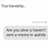 Alive, Meme, and Memes: True friendship  Today 8:32 AM  Are you alive u haven't  sent a meme in awhile True