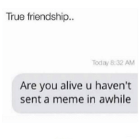 Are You Alive: True friendship..  Today 8:32 AM  Are you alive u haven't  sent a meme in awhile