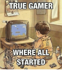 Who remembers this game? backinthedaywheniwasyoungimnotakidanymore: TRUE GAMER  WHERE ALL  STARTED Who remembers this game? backinthedaywheniwasyoungimnotakidanymore