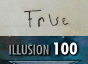 Quantum computers be like: True  ILLUSION 100 Quantum computers be like