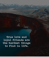 Friends, Life, and Love: True love and  loyal friends are  the hardest things  to find in life.