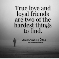 true love: True love and  loyal friends  are two of the  hardest things  to find.  Awesome Quotes  www.Awesomequotes4u.com