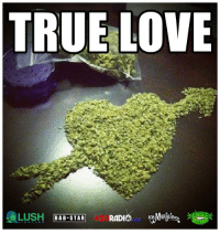 Memes, Lush, and 🤖: TRUE LOVE  LUSH DAB STAR A love for the ages! #cannabis #onelove #naturalmedicine