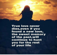 true love: True love never  dies, even if you  found a new love,  the sweet memory  of the past,will  continue to hunt  you for the rest  of your life.