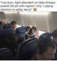 "LIKE ==> The Meme Train <== for more!: True story, flight attendant on Delta Airways  posted ths pic with caption ""only 1 paying  attention to safety demo"" LIKE ==> The Meme Train <== for more!"