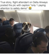 "True, Delta, and Flight: True story, flight attendant on Delta Airways  posted ths pic with caption ""only 1 paying  attention to safety demo"" It's just only me who wants safety tips!!"