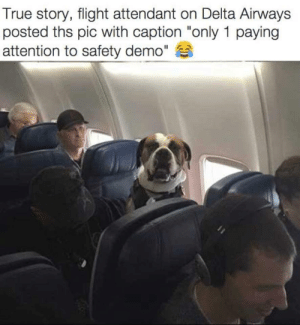 "True, Delta, and Flight: True story, flight attendant on Delta Airways  posted ths pic with caption ""only 1 paying  attention to safety demo"" Its just only me who wants safety tips !! :D :)"