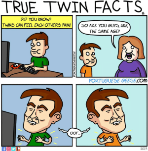 True Twin facts #3: TRUE TWIN FACTS  DID YOU KNOW?  TWINS CAN FEEL EACH OTHERS PAIN!SO ARE YOU GUYS, LIKE  THE SAME AGE?  PORTUGUESE GEESE.COM  2019 True Twin facts #3