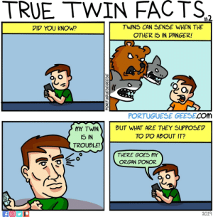 Facts, True, and Twins: TRUE  TWIN  FACTS  TWINS CAN SENSE WHEN THE  OTHER IS IN DANGER!  VID YOU KNOW?  PORTUGUESE GEESE.COM  MY TWINBUT WHAT ARE THEY SUPPOSED  TO VO ABOUT IT  IS IN  TROUBLE!  THERE GOES MY  ORGAN VONOR  2019 True Twin Facts #2