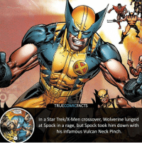 Wolverine vs Spock! ⠀_______________________________________________________ superman joker redhood martianmanhunter dc batman aquaman greenlantern ironman like spiderman deadpool deathstroke rebirth dcrebirth like4like facts comics justiceleague bvs suicidesquad benaffleck starwars darthvader marvel flash reverseflash danielwest blackadam: TRUECOMICFACTS  In a Star Trek/X-Men crossover, Wolverine lunged  at Spock in a rage, but Spock took him down with  his infamous Vulcan Neck Pinch Wolverine vs Spock! ⠀_______________________________________________________ superman joker redhood martianmanhunter dc batman aquaman greenlantern ironman like spiderman deadpool deathstroke rebirth dcrebirth like4like facts comics justiceleague bvs suicidesquad benaffleck starwars darthvader marvel flash reverseflash danielwest blackadam