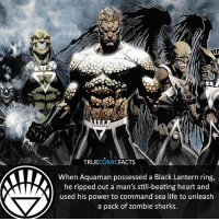 Black Lantern Aquaman! ⠀_______________________________________________________ superman joker redhood martianmanhunter dc batman aquaman greenlantern ironman like spiderman deadpool deathstroke rebirth dcrebirth like4like facts comics justiceleague bvs suicidesquad benaffleck starwars darthvader marvel flash reverseflash aquaman blacklantern: TRUECOMICFACTS  When Aquaman possessed a Black Lantern ring,  he ripped out a man's still-beating heart and  used his power to command sea life to unleash  a pack of zombie sharks. Black Lantern Aquaman! ⠀_______________________________________________________ superman joker redhood martianmanhunter dc batman aquaman greenlantern ironman like spiderman deadpool deathstroke rebirth dcrebirth like4like facts comics justiceleague bvs suicidesquad benaffleck starwars darthvader marvel flash reverseflash aquaman blacklantern