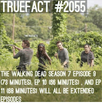 Memes, The Walking Dead, and 🤖: TRUEFACT #2055  TWDTRUEFACTS  THE WALKING DEAD SEASON 7 EPISODE 9  (73 MINUTES) EP 10 (66 MINUTES) AND EP  11 (68 MINUTES) WILL ALL BE EXTENDED  EPISODES Extended episodes! TWD TheWalkingDead WalkingDead