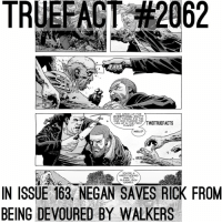 Team Rick-Negan ... Way better than Team Rick-Daryl .. I'm inlove 😍😍😍 TheWalkingDead TWD WalkingDead: TRUEFACT #2062  7 THIS MAKES UP FOR  EVERYTHING, RIGHT?  EVEN THOUGH I'M THE  ONE WHO FUCKED THE  TWDTRUEFACTS  LEG UP IN THE FIRST  PLACE?  WELL?  YOU'RE A  HARD FUCKING  MAN TO  PLEASE, RICK  GRIMES  IN ISSUE 163 NEGAN SAVES RICK FROM  BEING DEVOURED BY WALKERS Team Rick-Negan ... Way better than Team Rick-Daryl .. I'm inlove 😍😍😍 TheWalkingDead TWD WalkingDead