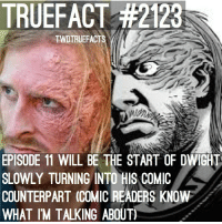 Memes, 🤖, and Twd: TRUEFACT #2123  TWDTRUEFACTS  EPISODE 11 WILL BE THE START OF DWIGHT  SLOWLY TURNING INTO HIS COMIC  COUNTERPART (COMICREADERS KNOW  WHAT IM TALKING ABOUT 😉 TWD TheWalkingDead WalkingDead