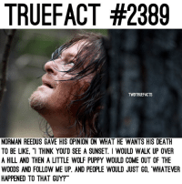 "Be Like, Memes, and Death: TRUEFACT #2389  TWDTRUEFACTS  NORMAN REEDUS GAVE HIS OPINION ON WHAT HE WANTS HIS DEATH  TO BE LIKE, ""I THINK YOUD SEE A SUNSET. I WOULD WALK UP OVER  A HILL AND THEN A LITTLE WOLF PUPPY WOULD COME OUT OF THE  WOODS AND FOLLOW ME UP. AND PEOPLE WOULD JUST GO, 'WHATEVER  HAPPENED TO THAT GUY?"" Daryl fans won't be happy with his death, either way...😬 TheWalkingDead TWD WalkingDead - Co-Owner"