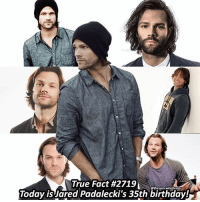 Happy 35th birthday to my FAV actor @jaredpadalecki you deserve everything that you have earned! Nothing but good vibes today on you're bday! I'm glad to share a birthday with you!🤗 ➖➖➖➖➖➖➖➖➖➖➖➖➖➖➖➖➖➖➖ supernaturalfacts supernaturaltumblr supernatural spn spnfacts dean thecw sam supernaturalfamily Castiel spn12 spnfunny jensenackles supernaturalfunny gifs samwinchester jaredpadalecki menofletters alwayskeepfighting deanwinchester spnau winchester cas mishacollins tvd supernaturalseason12 youareenough: -  TrueFact #2719  Today is Jared Padalecki's 35th birthday!  @thesam.winchester Happy 35th birthday to my FAV actor @jaredpadalecki you deserve everything that you have earned! Nothing but good vibes today on you're bday! I'm glad to share a birthday with you!🤗 ➖➖➖➖➖➖➖➖➖➖➖➖➖➖➖➖➖➖➖ supernaturalfacts supernaturaltumblr supernatural spn spnfacts dean thecw sam supernaturalfamily Castiel spn12 spnfunny jensenackles supernaturalfunny gifs samwinchester jaredpadalecki menofletters alwayskeepfighting deanwinchester spnau winchester cas mishacollins tvd supernaturalseason12 youareenough