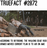 Check out my story for a giveaway 🔥🔥 walkingdead thewalkingdead twd: TRUEFACT #2872  TWDTRUEFACTS  ACCORDING TO SKYBOUND, THE WALKING DEAD RICK  GRIMES MOVIES CURRENT PLAN IS TO AIR ON AMC Check out my story for a giveaway 🔥🔥 walkingdead thewalkingdead twd