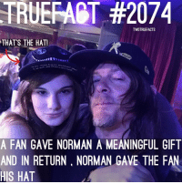 Memes, 🤖, and My Girl: TRUERART #2074  TWDTRUEFACTS  THAT'S THE HAT!  A FAN GAVE NORMAN A MEANINGFUL GIFT  AND IN RETURN, NORMAN GAVE THE FAN  HIS HAT My girl @_katiehays_ 's fact! Norman is awesome to fans! TWD TheWalkingDead WalkingDead when I met him, he sprayed me in the eye with silly string so Michael Rooker gave me his to spray back at Norman ! DarylDixon NormanReedus
