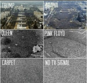 Pink Floyd, Queen, and Pink: TRUMP  AMA  QUEEN  PINK FLOYD  CARPET  NDTV SIGNAL
